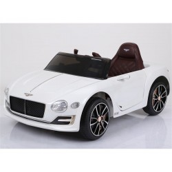 Bentley EXP12 wit, 12V...